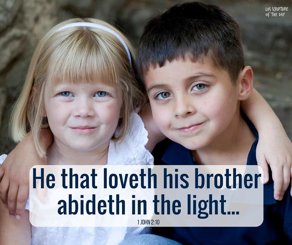 He that loveth his brother abideth in the light, and there is none occasion of stumbling in him. 1 John 2:10