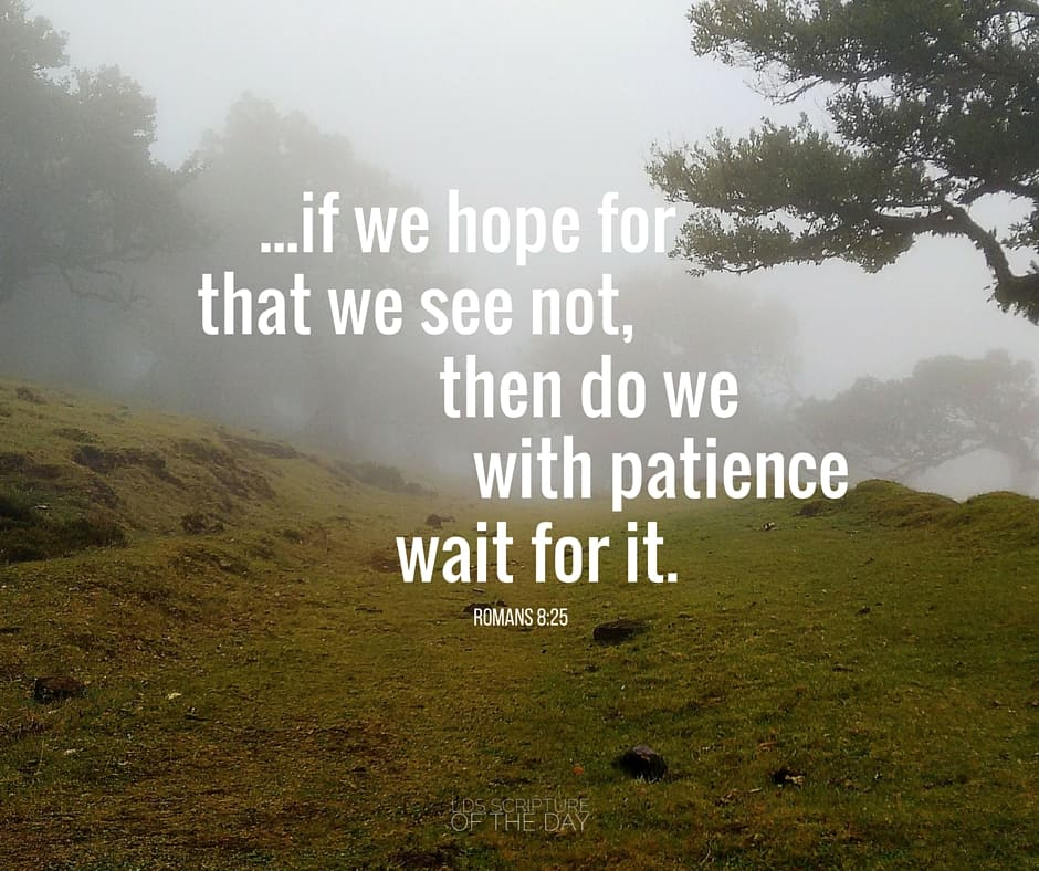 ...if we hope for that we see not, then do we with patience wait for it. Romans 8:25
