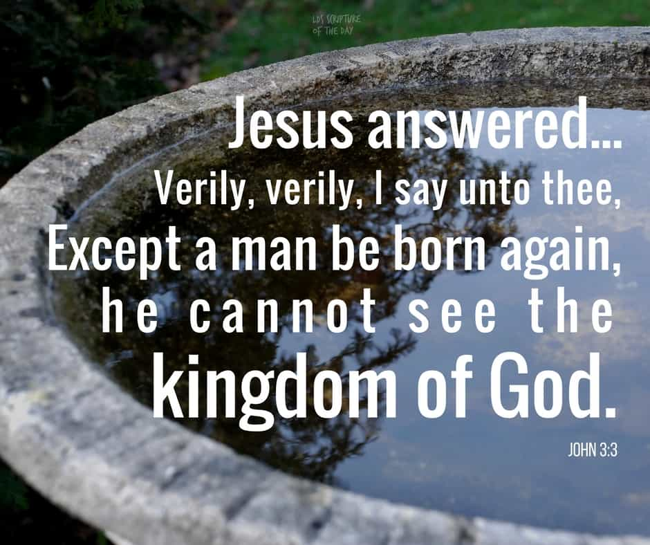 Jesus answered and said unto him, Verily, verily, I say unto thee, Except a man be born again, he cannot see the kingdom of God. John 3:3
