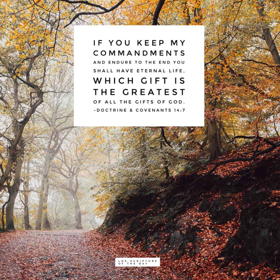 ...if you keep my commandments and endure to the end you shall have eternal life, which gift is the greatest of all the gifts of God. Doctrine & Covenants 14:7