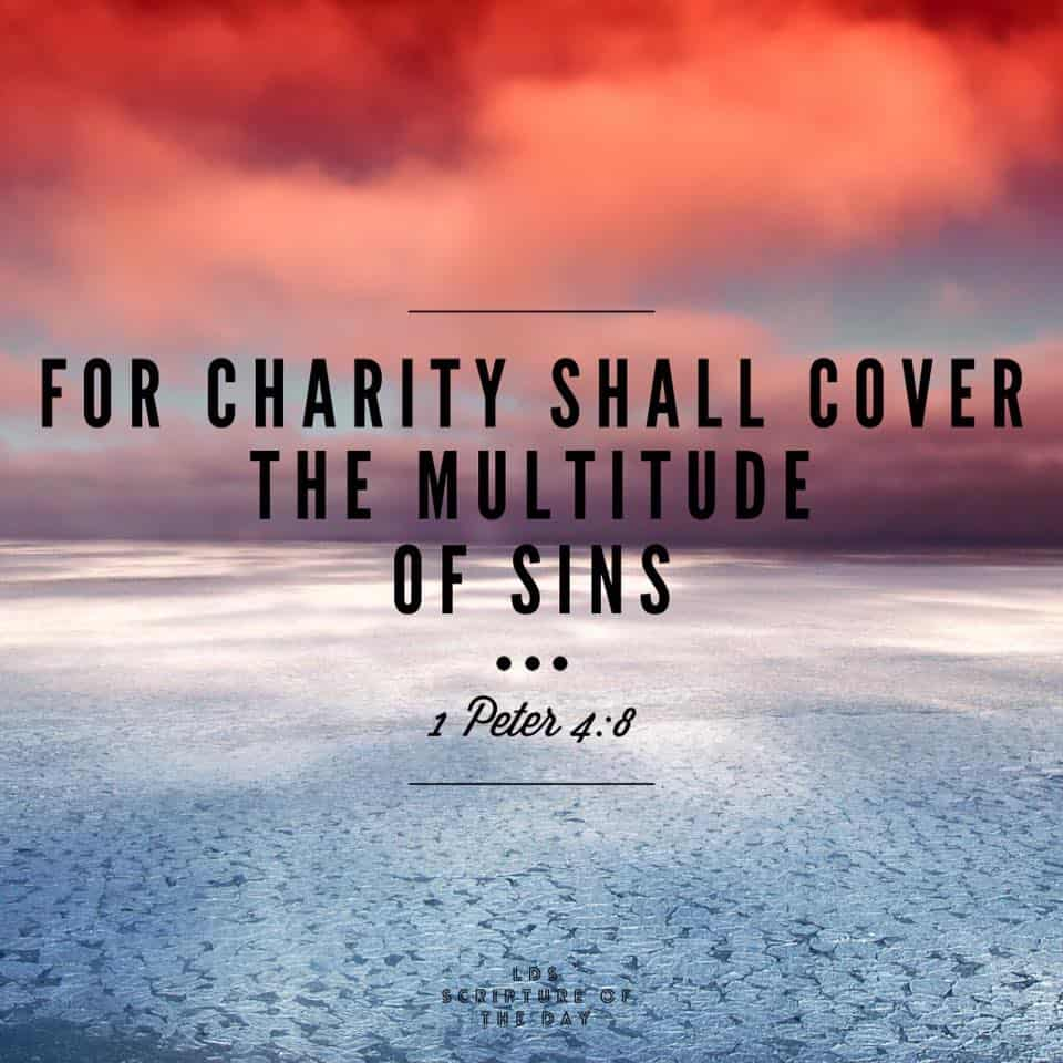 For charity shall cover the multitude of sins. 1 Peter 4:8