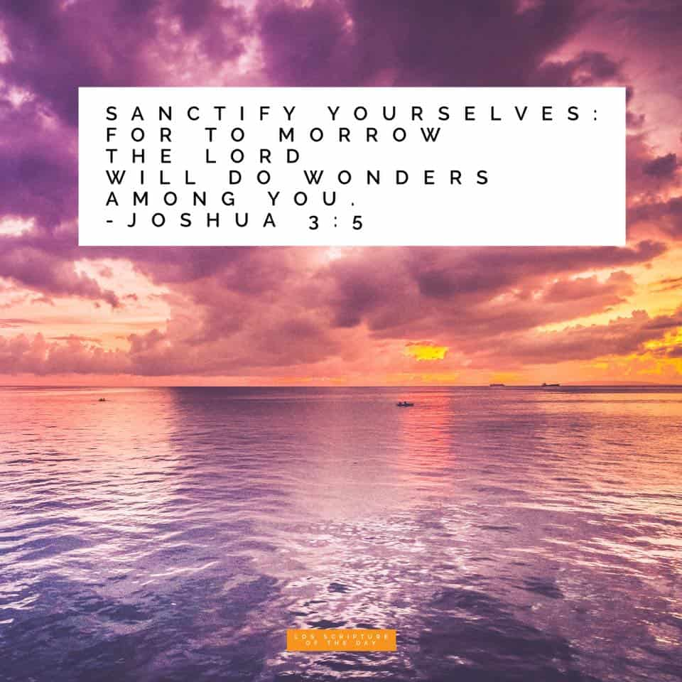 Sanctify yourselves: for to morrow the Lord will do wonders among you. Joshua 3:5