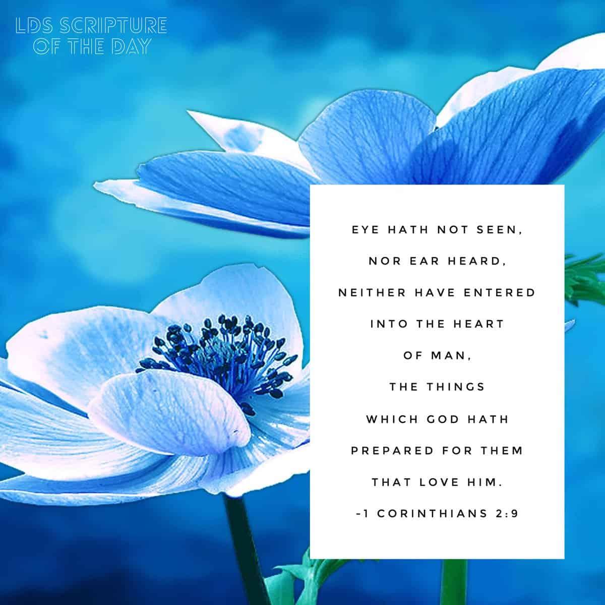 Eye hath not seen, nor ear heard...the things which God hath prepared for them that love him. 1 Corinthians 2:9
