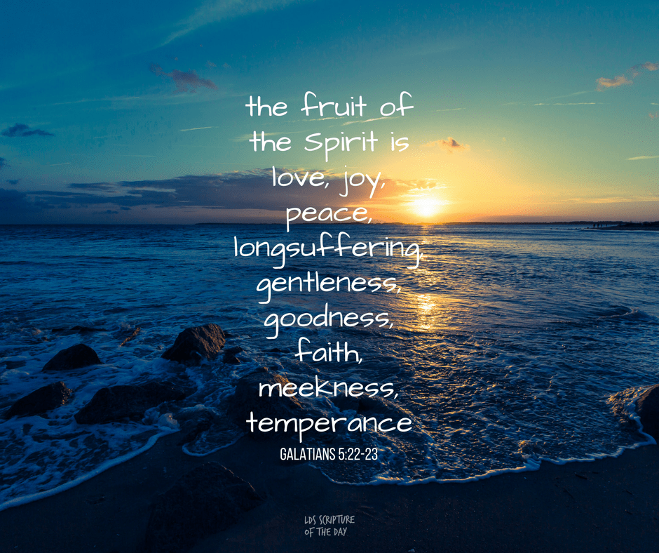 the fruit of the Spirit is love, joy, peace, longsuffering, gentleness, goodness, faith, meekness, temperance Galatians 5:22-23