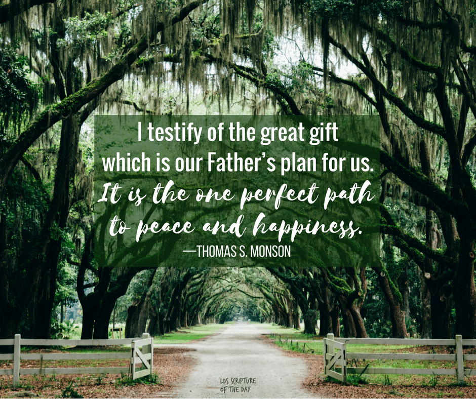 I testify of the great gift which is our Father's plan for us. It is the one perfect path to peace and happiness. —Thomas S. Monson