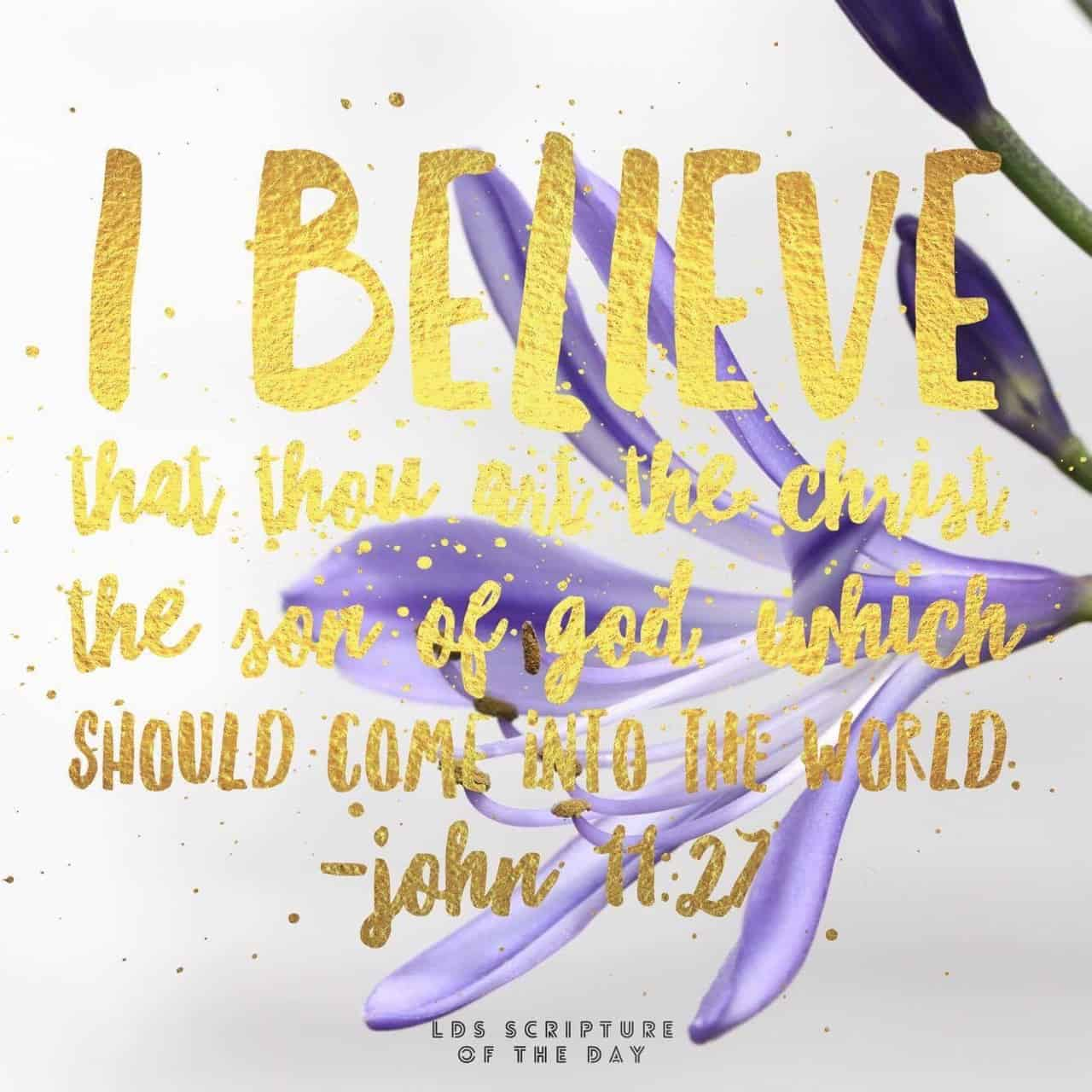 I believe that thou art the Christ, the Son of God, which should come into the world. John 11:27