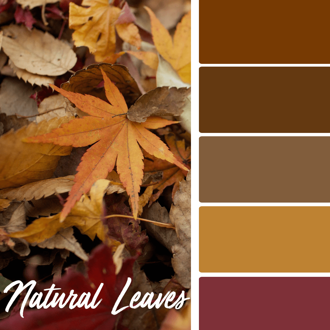 Natural Leaves - 25 Fall Wedding Colors Any Bride & Groom Will Love