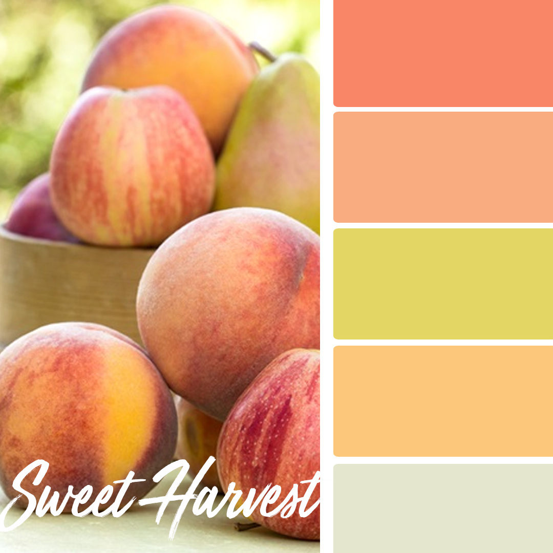 Sweet Harvest - 25 Fall Wedding Colors Any Bride & Groom Will Love