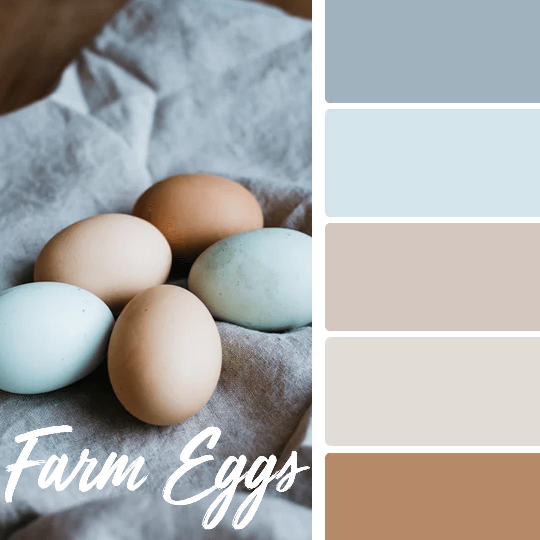 farm-eggs-spring-wedding-colors