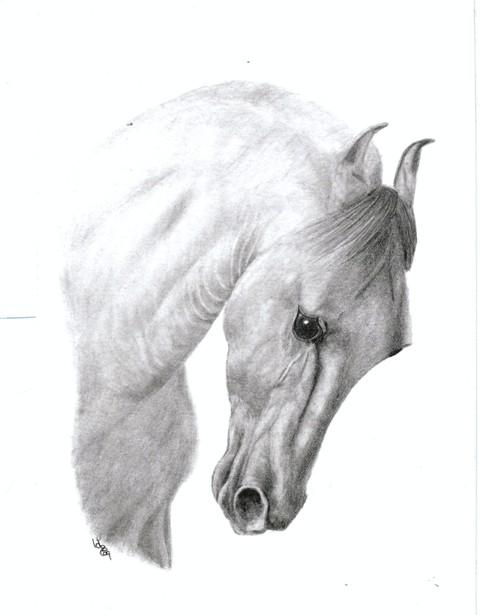 2009-40