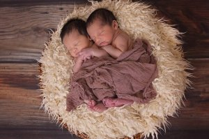 Conte et PMA - La course - Bonheur en éprouvette - bébés jumeaux sur un coussin
