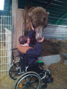Jules le chameau du Camélus