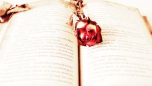 roman sentimental