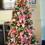 Holiday Decoration Rentals