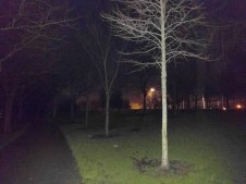 fairview_park_nuit.jpg