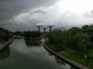 Gardens by the Bay et Supertrees