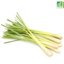 Huile Essentielle de Lemongrass bio (10 ml) - Abiessence