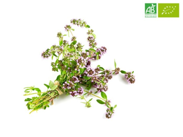 Huile Essentielle de Thym linalol bio (5 ml) - Abiessence