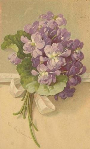 violettes_bouquet.jpg