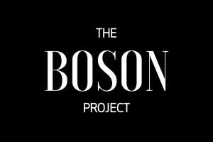 Read more about the article Partir de l'humain pour changer l'entreprise, le pari de la société de conseil The Boson Project