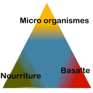 triangle bénéfique du basalte