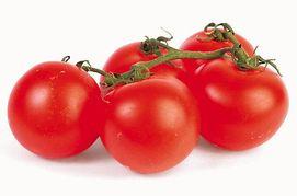 fruits légumes tomate