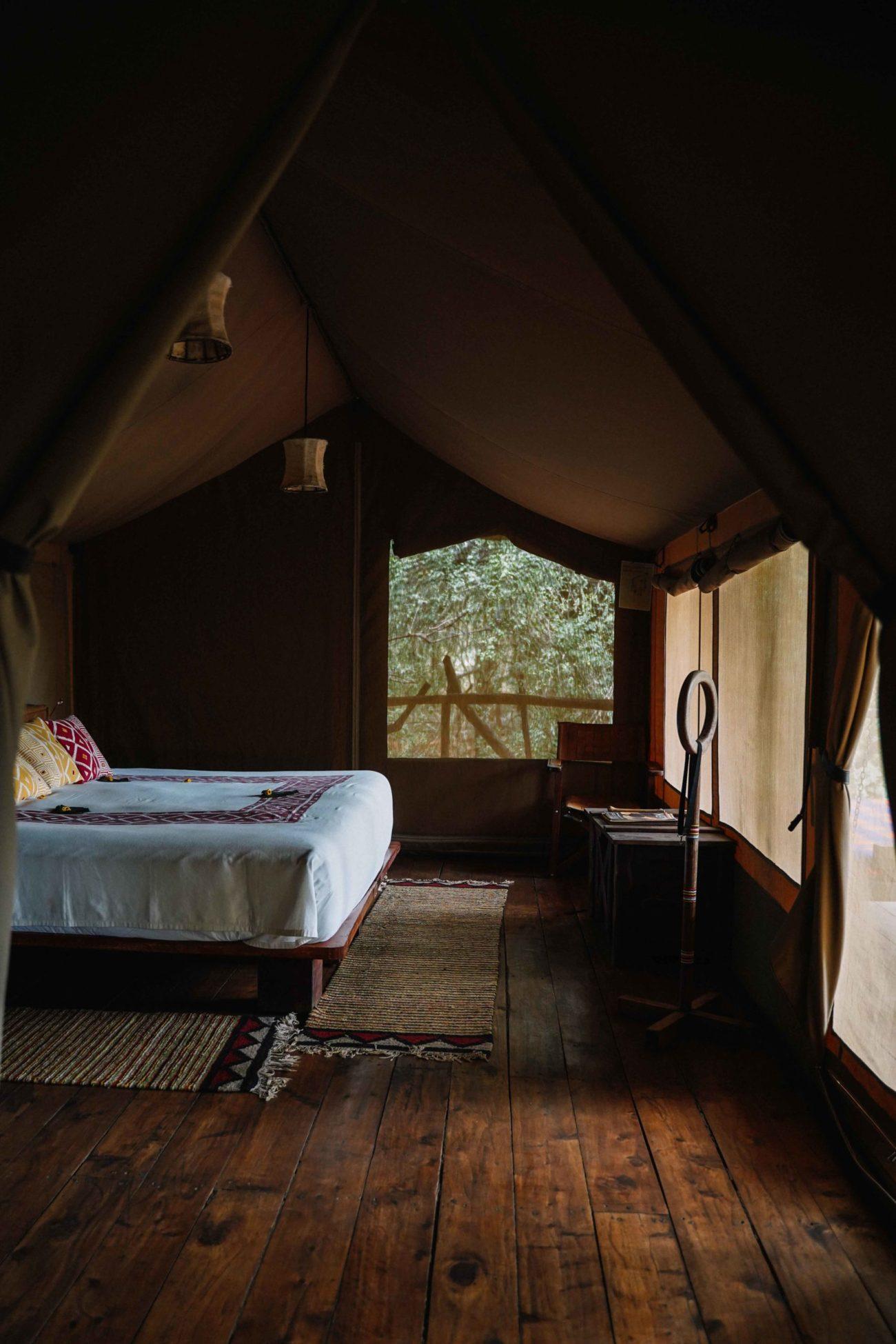voyage au kenya : le masai mara