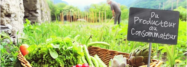 Du producteur au consommateur / aliments pour maigrir