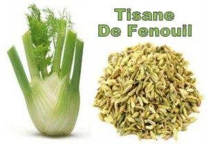 tisane-de-fenouil-300x208