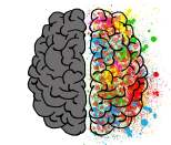 cerveau, hyperactivité et hypoactivité