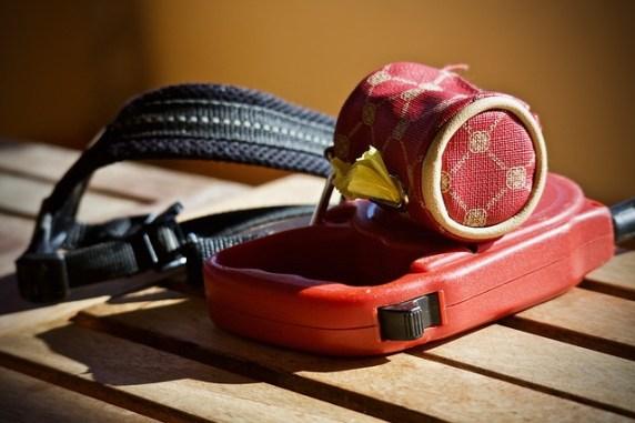Accessoires pour animaux de compagnie : avis astuces conseils et comparatifs