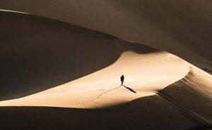 Jacques Dufresne, contre l'avancée du désert
