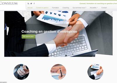 Site de Consilum, conseil en gestion d'entreprise
