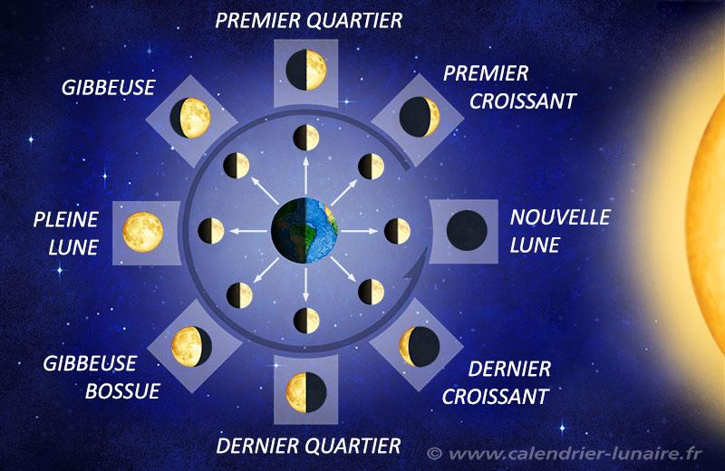 phase lune