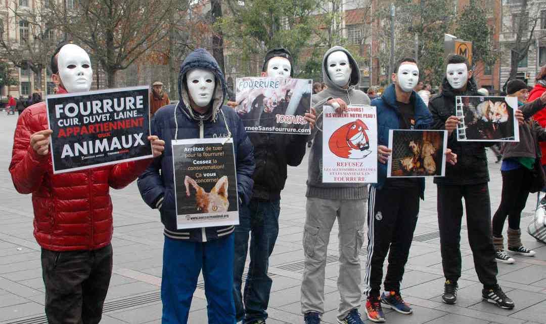 Anti fourrure : des manifestations prévues samedi