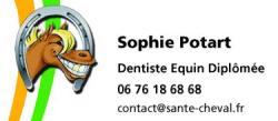 Dentiste Equin Santé Cheval