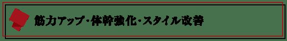 パーソナルトレーニングジム【LEAD リード】名古屋・北区|筋力アップ-体幹強化-スタイル改善