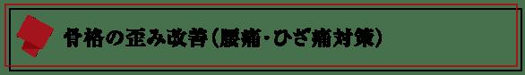 パーソナルトレーニングジム【LEAD リード】名古屋・北区|骨格の歪み改善-腰痛・ひざ痛対策