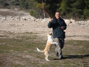 Barry and Ignacio, Spain
