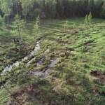 Hammarudda multifunktionella våtmark