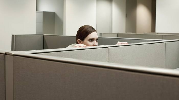 Suspicious Woman Cubicle