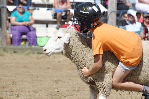 Lane Robertson takes part in the mutton bustin' competition at the Findlater Ranch Rodeo presented by K+S Potash Canada on Aug. 6.