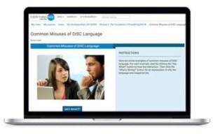 Disc online leadership alive copy