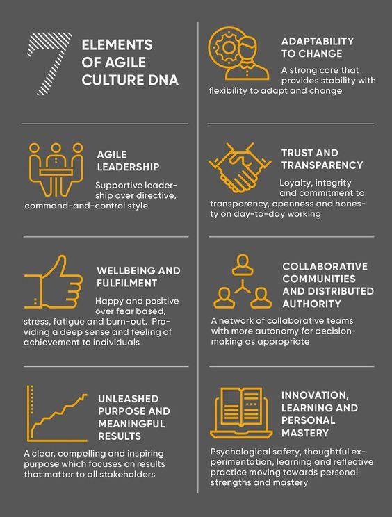 Bouw met 7 elementen aan het Agile DNA van je organisatie