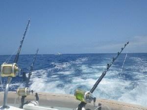MARLIN FISHING TACKLE