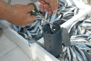 stonfo-510-boat-bait-feeder-4