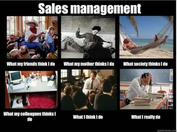 Sales Team Motivation - The Successful Sales Manager's Guide