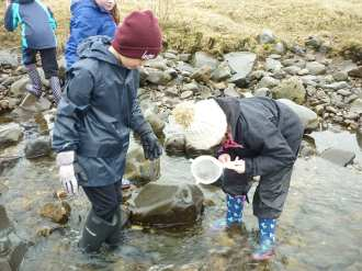 stream-dipping-1