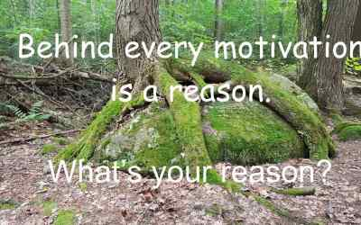 What's your reason?