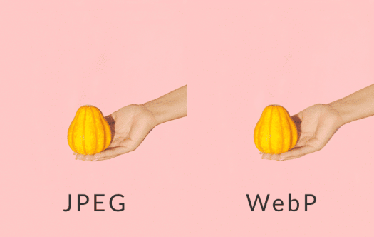Comparing JPGE to WebP